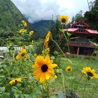 Trishla Resorts 4/5 by Tripoto