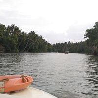 Poovar Backwater Cruise 4/10 by Tripoto