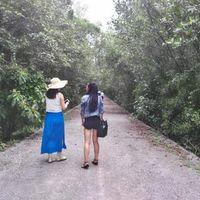 Mangrove Pranburi Pran Buri Prachuap Khiri Khan Thailand 4/6 by Tripoto