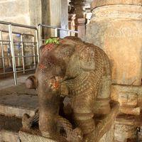 Sri Ranganathaswamy Temple 4/17 by Tripoto