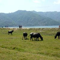 Pokhara Valley 4/4 by Tripoto