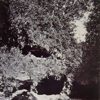 5. Robber's Cave 2/2 by Tripoto