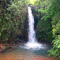 Apsara Konda Falls 3/3 by Tripoto