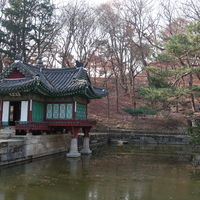 Changdeokgung Palace 3/4 by Tripoto
