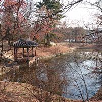 Changdeokgung Palace 4/4 by Tripoto