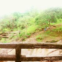 Sanjay Gandhi National Park 2/70 by Tripoto