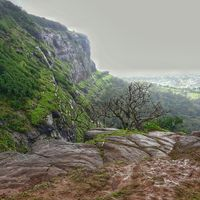 One Tree Hill Point 2/4 by Tripoto