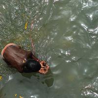 Har ki Pauri 4/29 by Tripoto