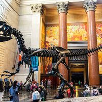 American Museum of Natural History 2/2 by Tripoto