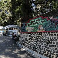 Padmaja Naidu Himalayan Zoological Park 2/18 by Tripoto