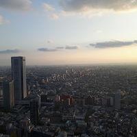 Tokyo Metropolitan Government Building 3/4 by Tripoto