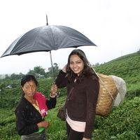 Happy Valley Tea Estate 4/11 by Tripoto