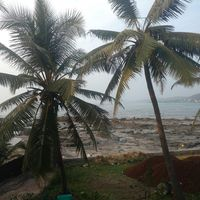 Harnai Beach 3/8 by Tripoto