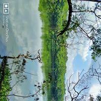 Rajiv Gandhi Zoological Park 5/5 by Tripoto