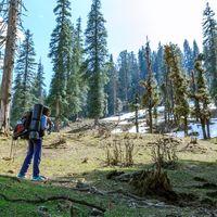 Kedarkantha Peak 4/50 by Tripoto