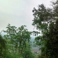 Nilgiri Hills 2/25 by Tripoto
