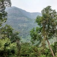 Nilgiri Hills 5/25 by Tripoto
