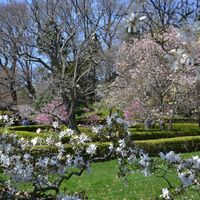Brooklyn Botanic Garden 5/6 by Tripoto