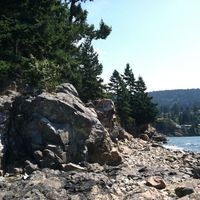 Whytecliff Park 5/8 by Tripoto