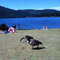 Cultus Lake 2/2 by Tripoto