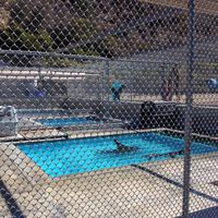 Pacific Marine Mammal Center 4/4 by Tripoto