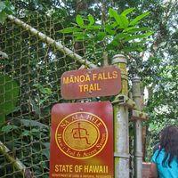 Manoa Falls Trail 2/9 by Tripoto