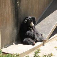 Zoo Boise 3/8 by Tripoto
