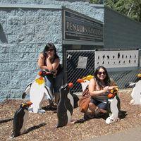 Zoo Boise 5/8 by Tripoto