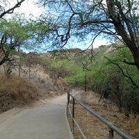 Diamond Head State Park 3/8 by Tripoto