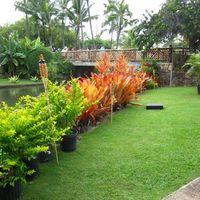 Polynesian Cultural Center 4/5 by Tripoto