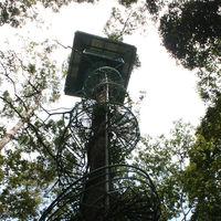 Cogon EcoTourism Park 2/9 by Tripoto