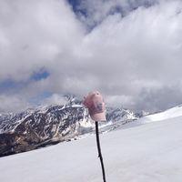 Pangarchulla Peak 3/11 by Tripoto