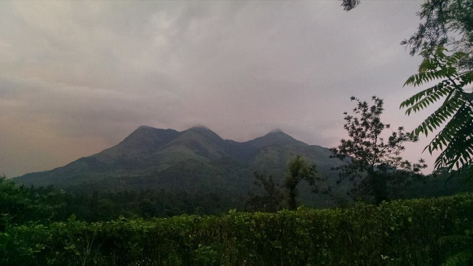 Photo of Wayanad By Pratik Das