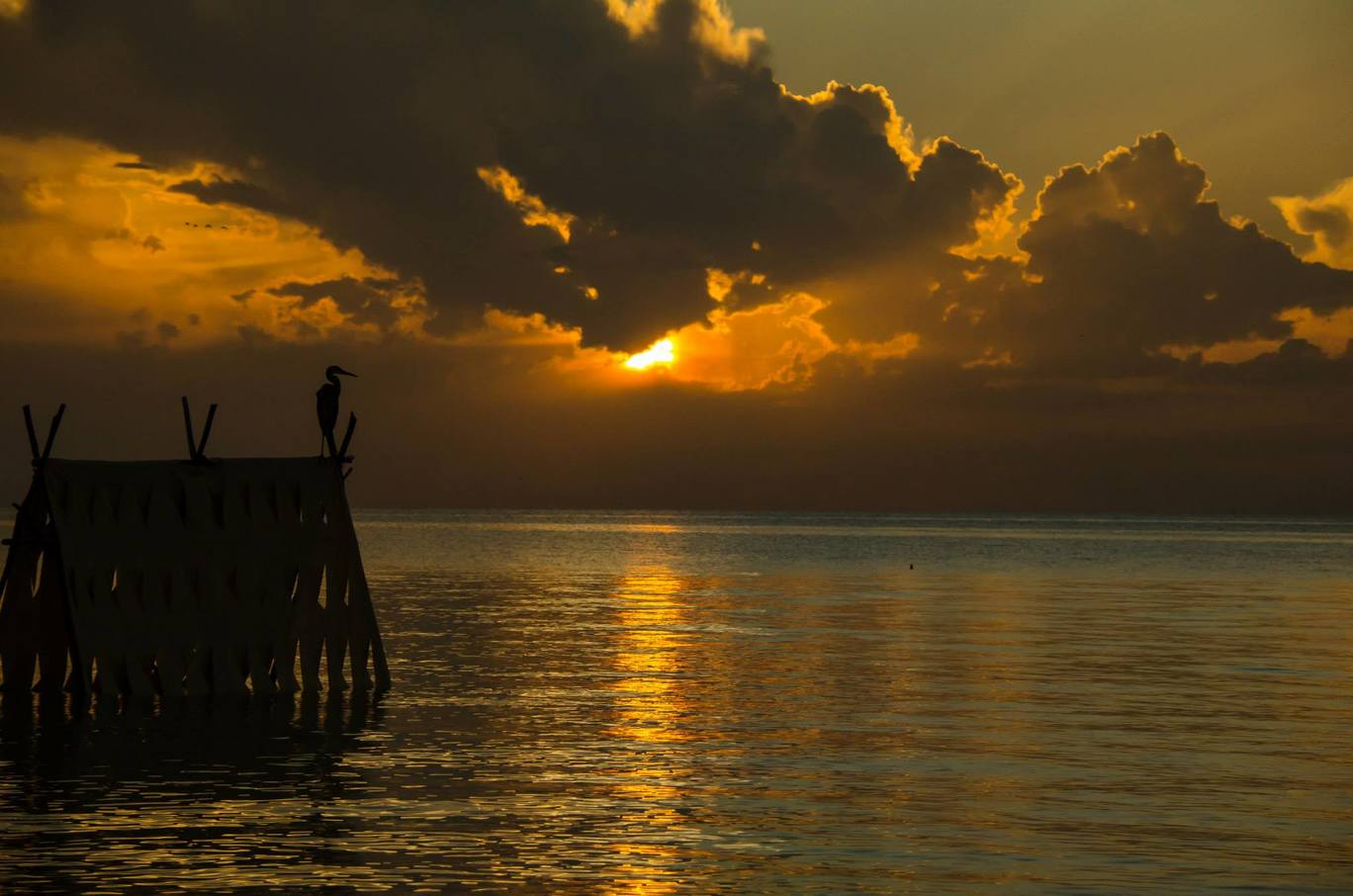 Photo of Cayo Coco By Katie Collins Bray