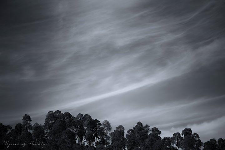 Photo of Uroli By Chinmay