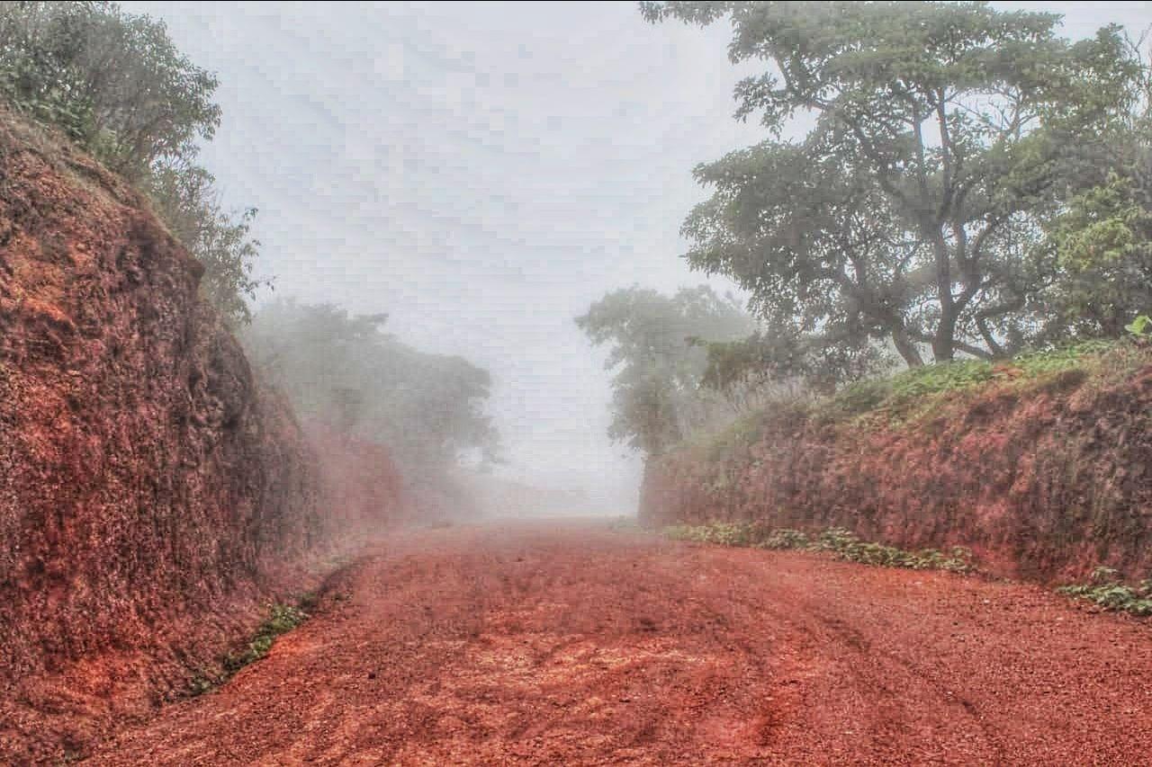 Photo of Tungareshwar Road By Arif Ansari