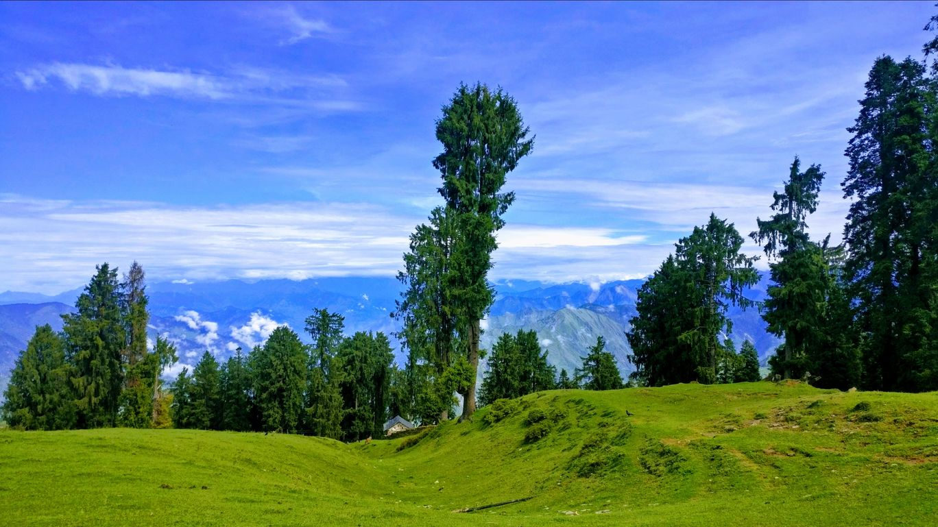 Photo of Thachi By Thachi camping