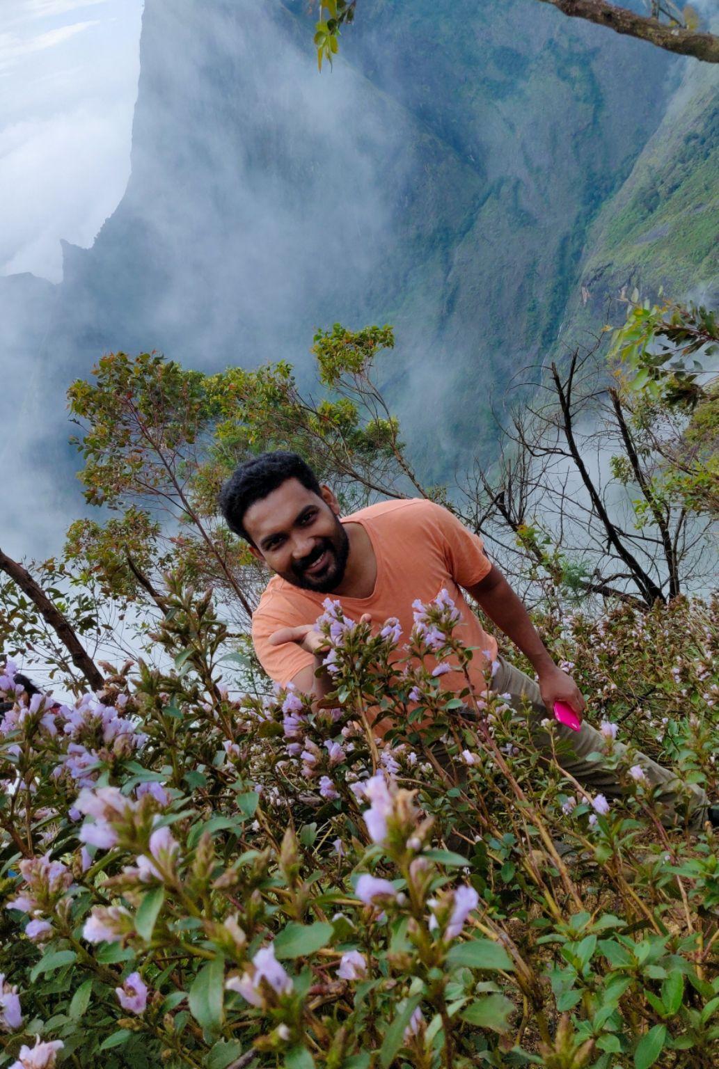 Photo of Munnar By Anuji P Supran