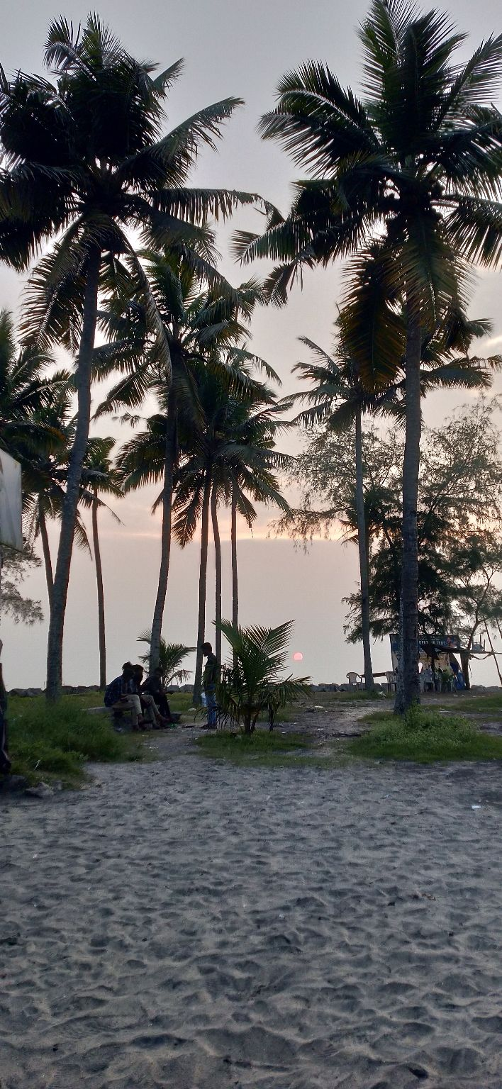 Photo of Alleppey By v921995