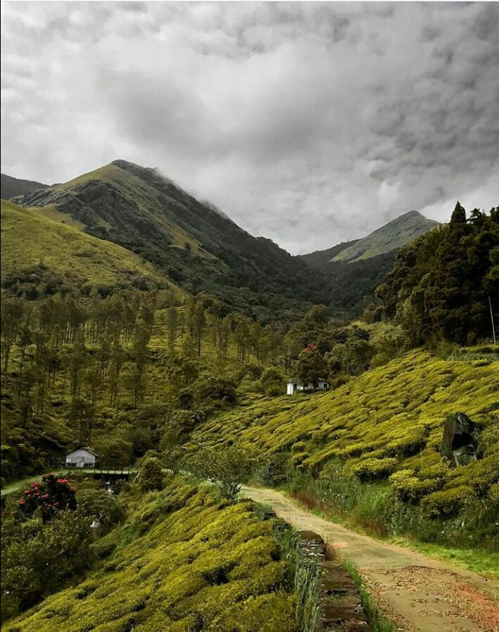 Photo of Wayanad By Akshai kumar
