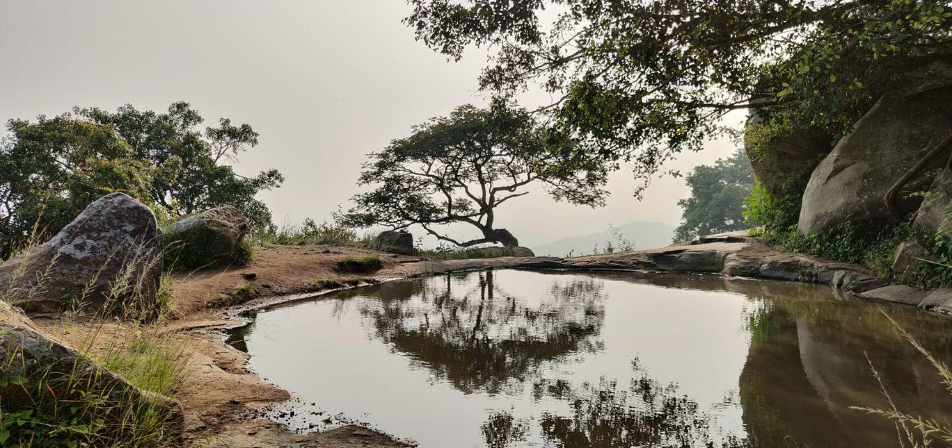 Photo of Avalabetta Hill Top View Point By Prasanjit Nath