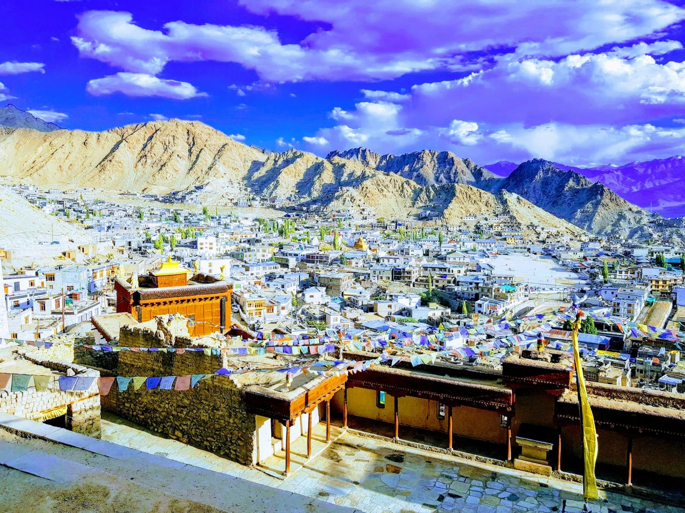 Photo of Leh Palace By megha
