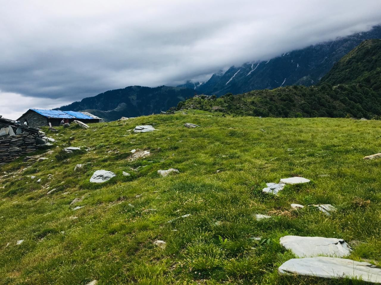 Photo of Triund By Deepti Rana