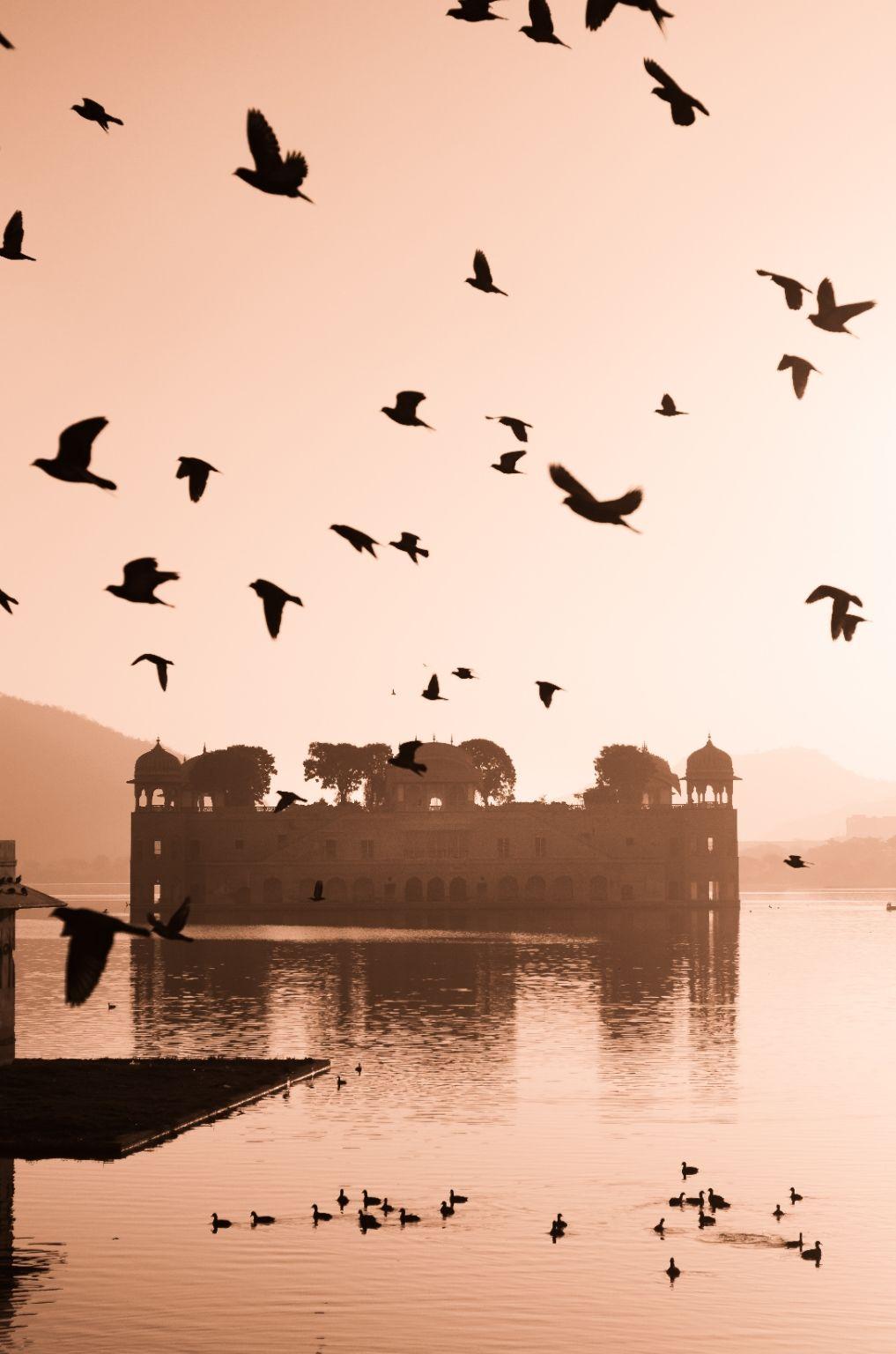 Photo of Jaipur By Mohd Aram