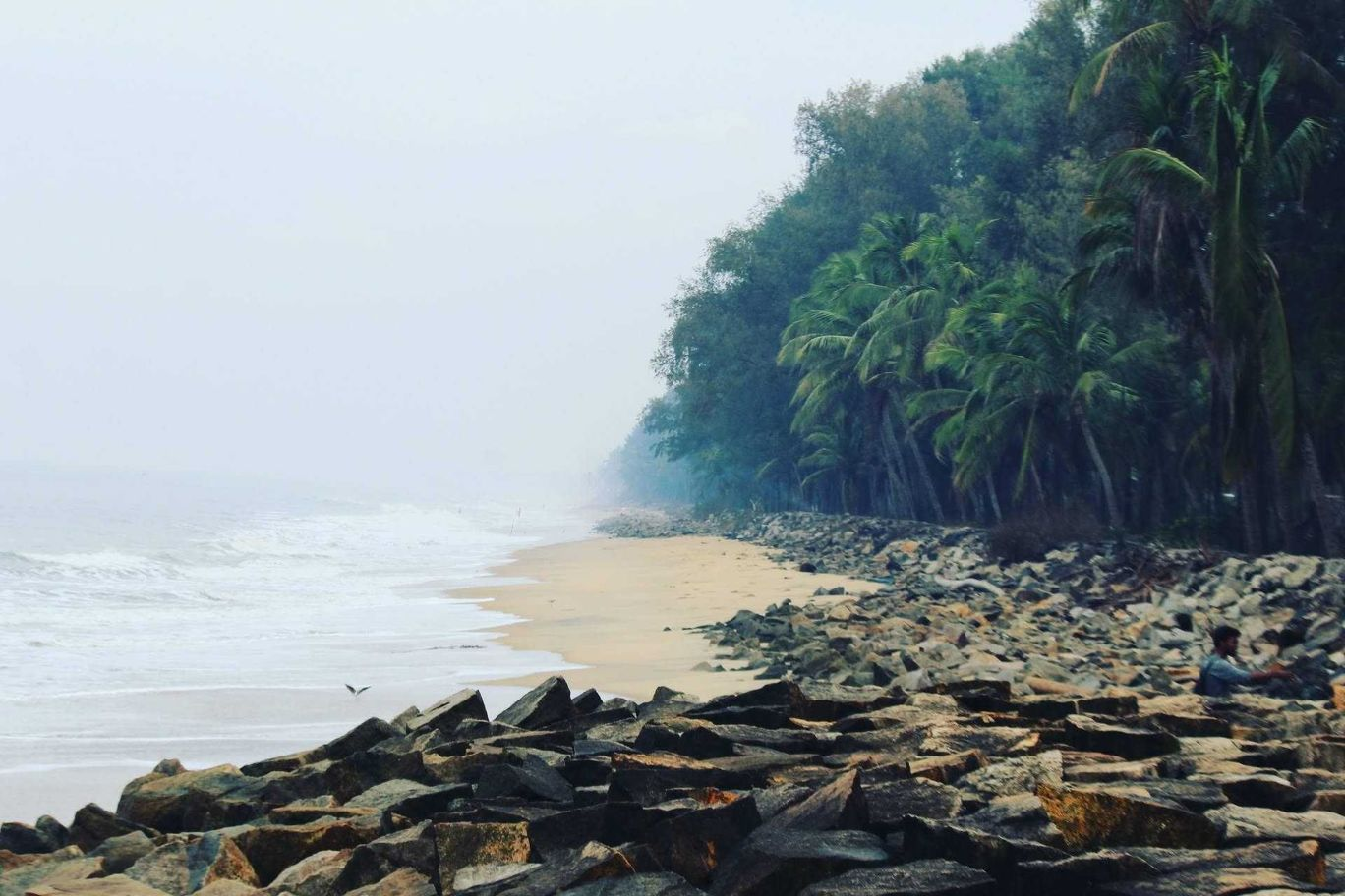 Photo of Snehatheeram Beach By Rathin Varadha Rajan