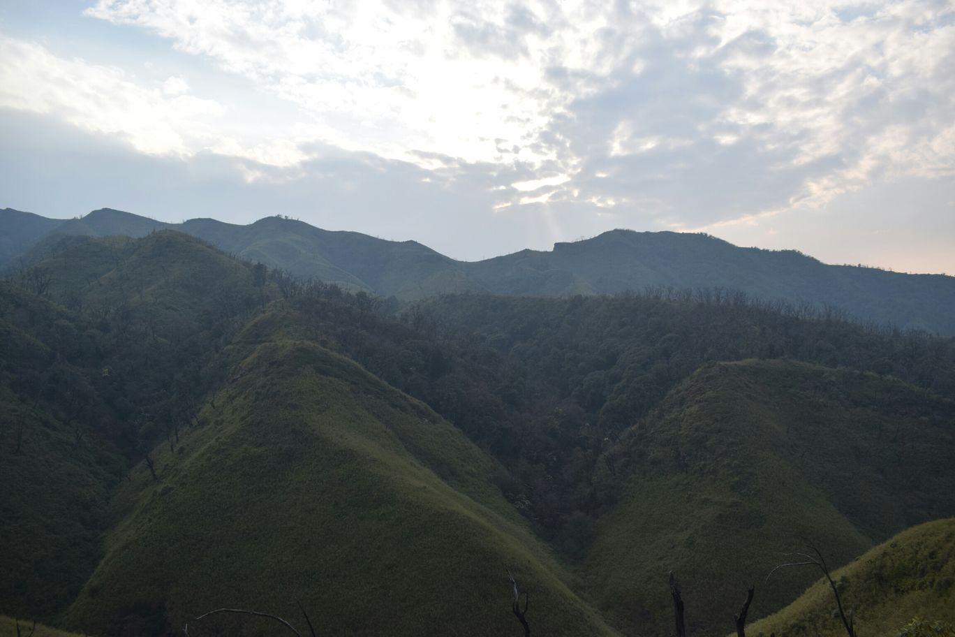 Photo of Dzükou Valley By Somya Parashar