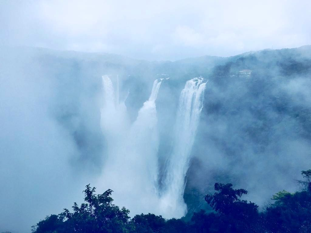 Photo of Jog Falls By vimal chavda