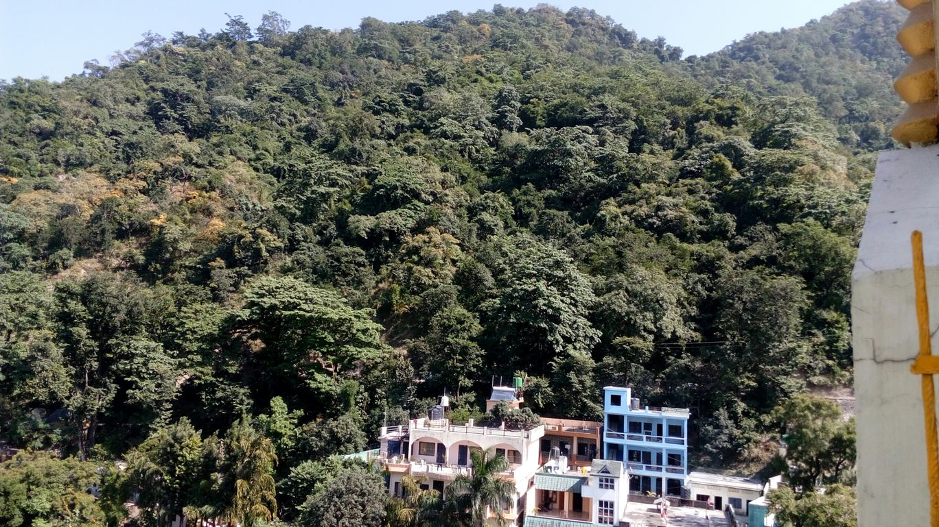 Photo of Rishikesh By rajat tyagi