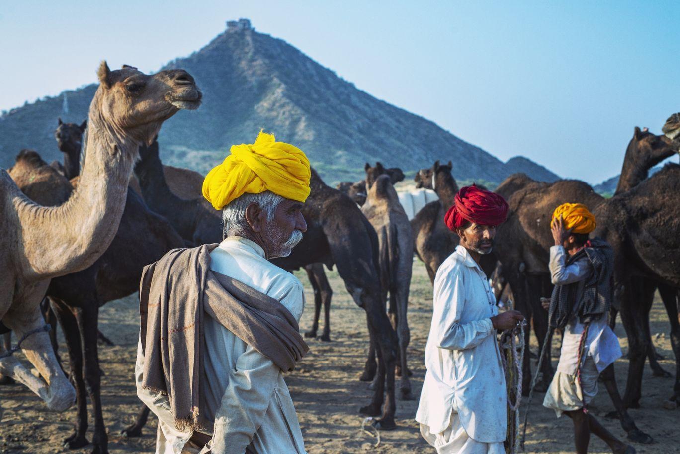 Photo of Pushkar By Aman Chotani