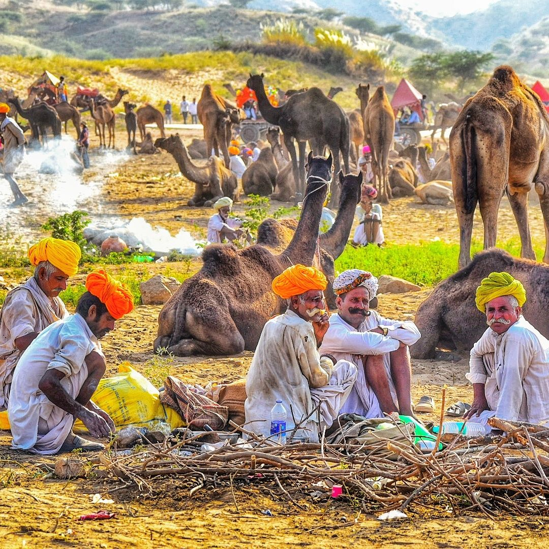 Photo of Pushkar By Akanksha Chouhan